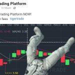 TIger trading platform and disney?